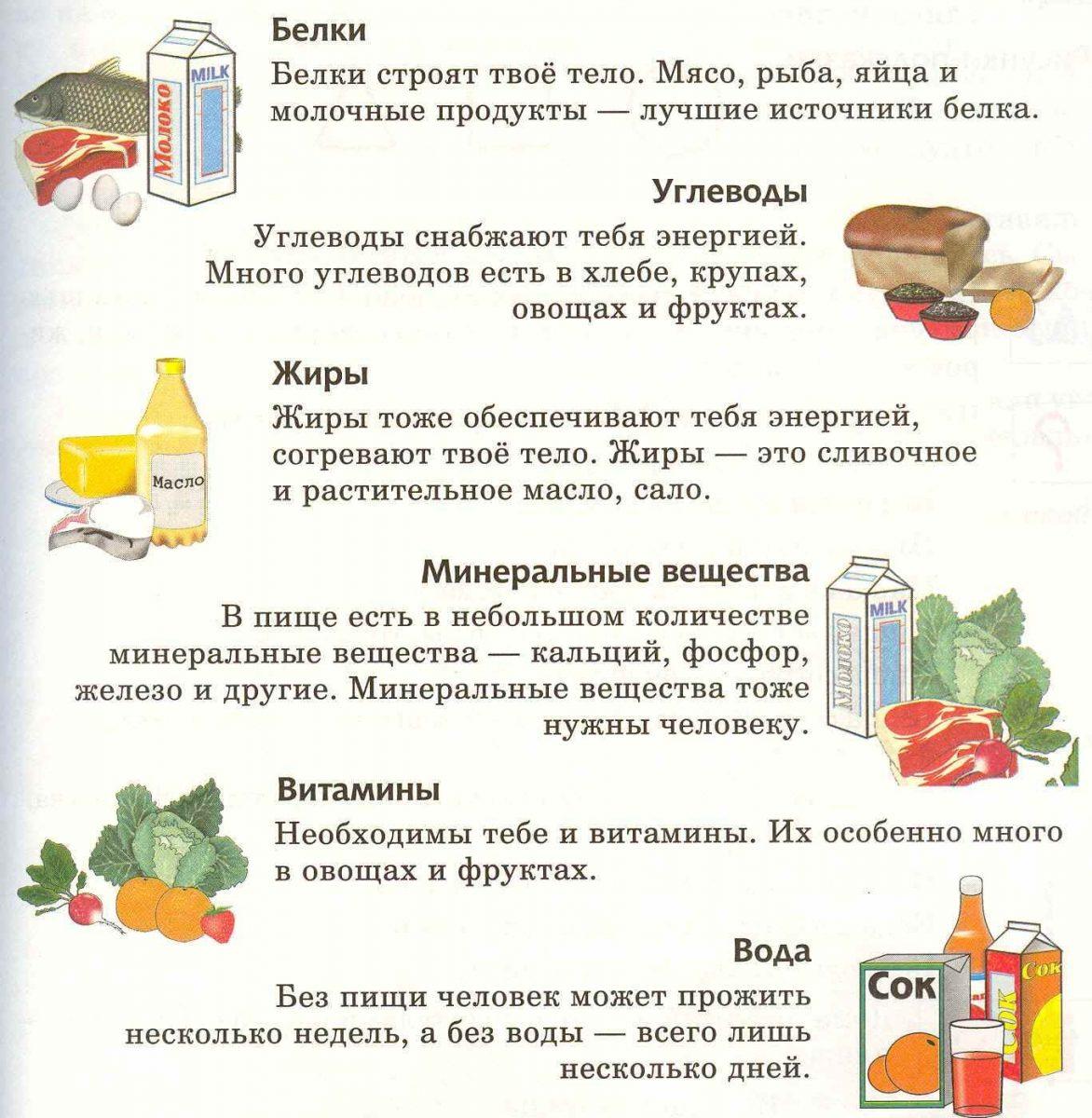 Необходимые вещества для организма