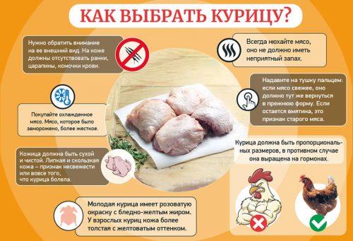 Советы по выбору курицы
