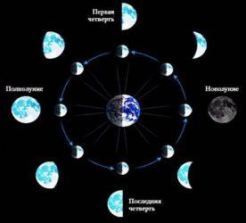На сколько килограмм можно похудеть на лунной диете?