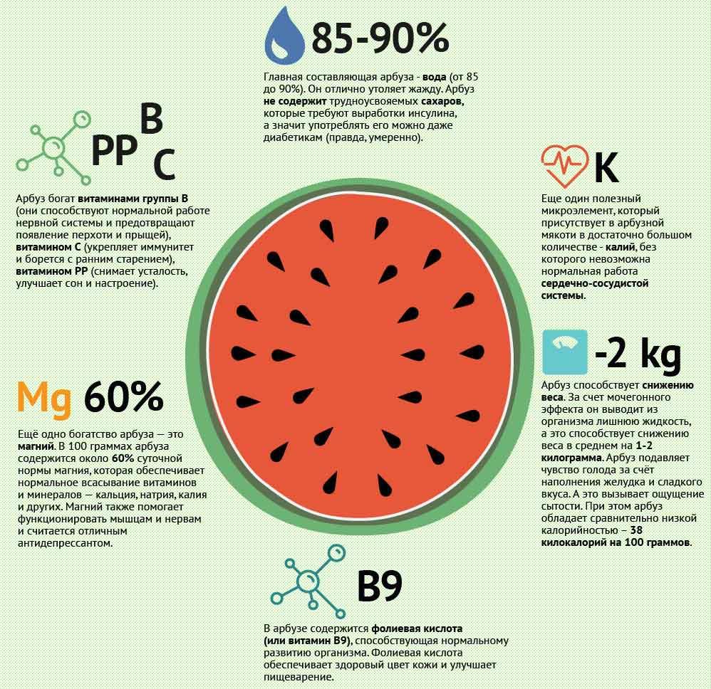 Состав и польза арбуза