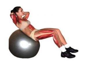 Мышцы на фитболе