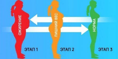 Этапы ожирения