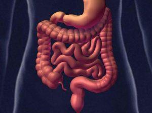 Очищение кишечника