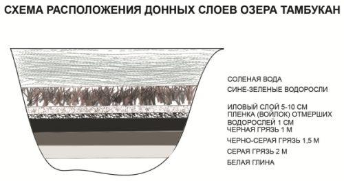 Схема расположения донных слоев озера Тамбукан