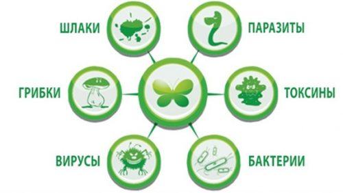 Генеральная чистка организма