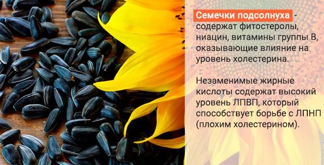Польза подсолнечных семечек