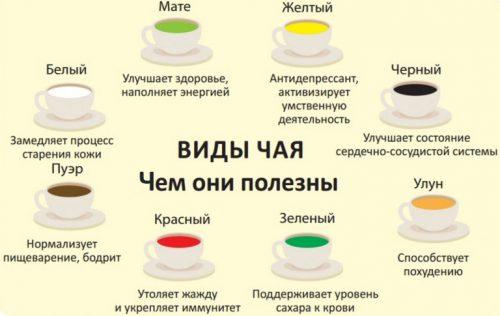 Виды чая и их польза