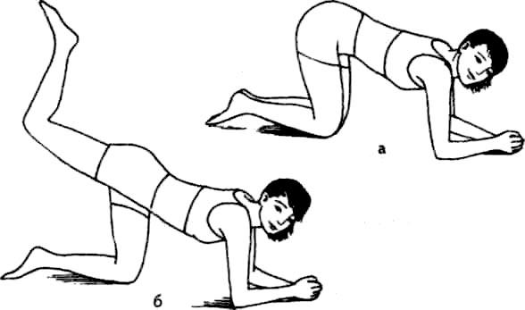 Упражнения стоя на коленях