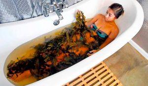 Ванна с ламинарией