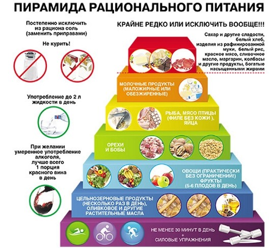Пирамида рационального питания