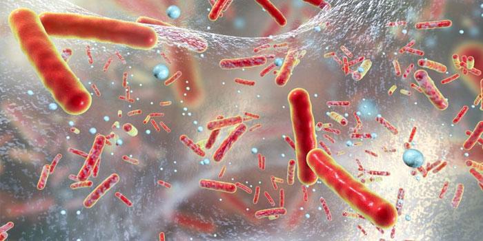 бактерицидная этиология