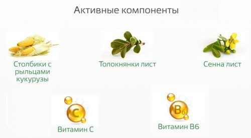 Активные компоненты очищающего чая Леовит