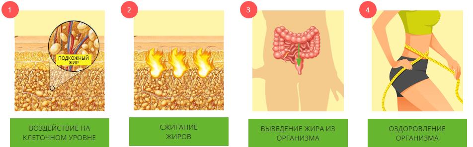 Процесс сжигания жира
