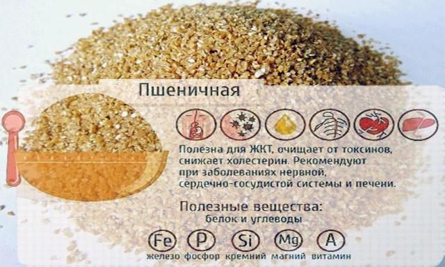 Состав и польза пшеничной каши