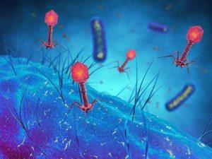 Борьба с бактериями