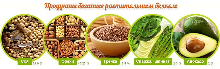 Продукты, богатые растительным белком
