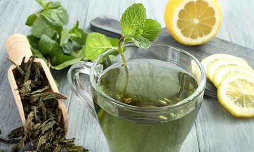 Употребление зеленого чая во время диеты