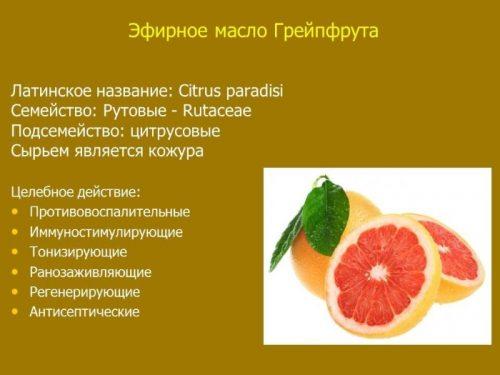 Основные свойства масла грейпфрута