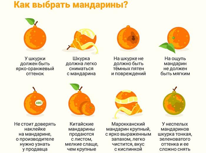Правильный выбор мандаринов