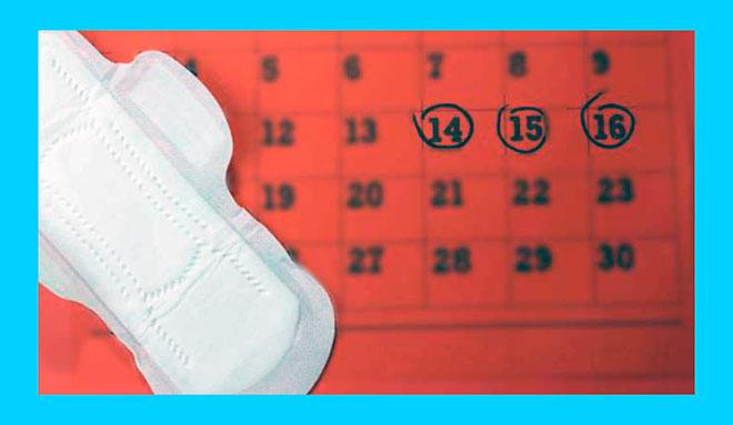 чистая женская прокладка и красный календарь
