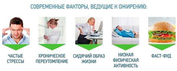 Основные причины ожирения