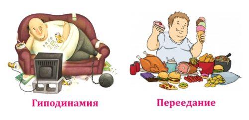 Основные факторы ожирения