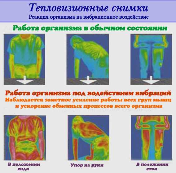 Реакция организма под действием вибрации