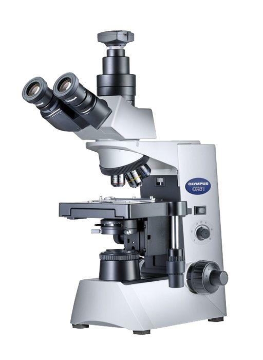 Микроскоп olympus cx31 – выбор, который может стать лучшим