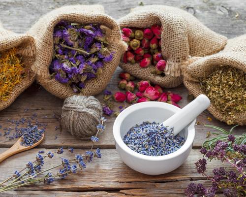 Рецепты отваров трав для лечения гастрита