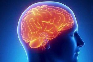 Травмы мозга