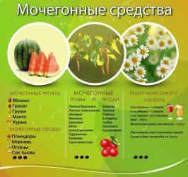 Мочегонные растения