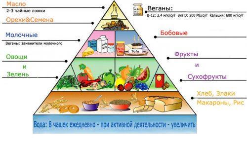 Пирамида веганства