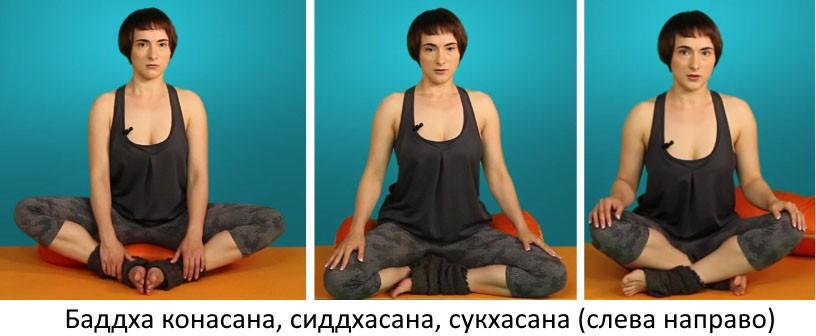 Виды поз в йоге
