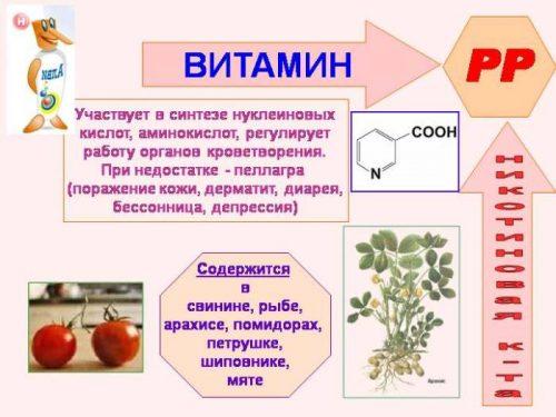 Польза никотиновой кислоты
