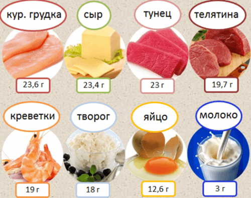 Продукты богатые протеином
