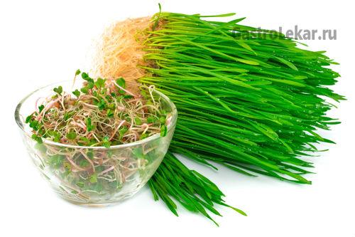 Пророщенные зерна пшеницы при лечении гастрита