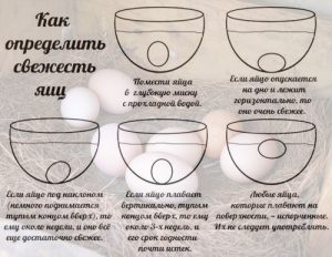 Определение свежести яйца
