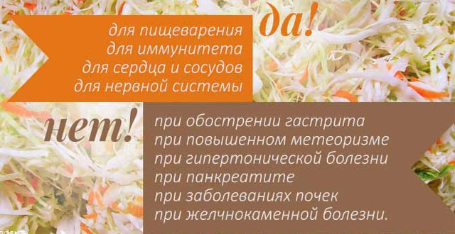 Показания и противопоказания квашеной капусты