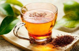 Чай из крушины