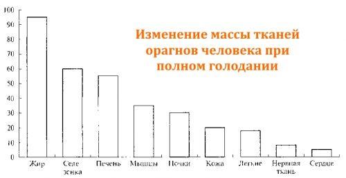 Диаграмма изменения массы тканей органов человека в ходе полного голодания
