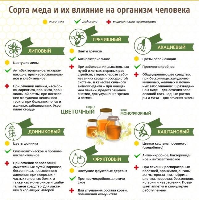Польза разных сортов меда