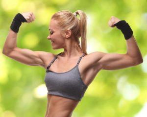 Мышцы на руках