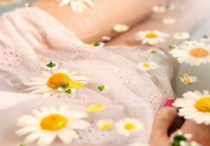 Роль ромашки в похудении и способы ее использования
