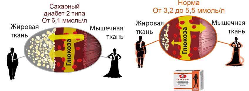 Нормальный уровень сахара в крови