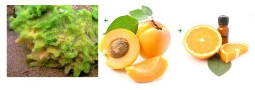 Ингредиенты для абрикосовой маски