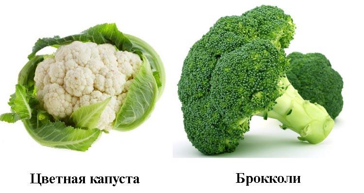 Внешний вид цветной капусты и брокколи
