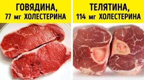 Телятина и говядина