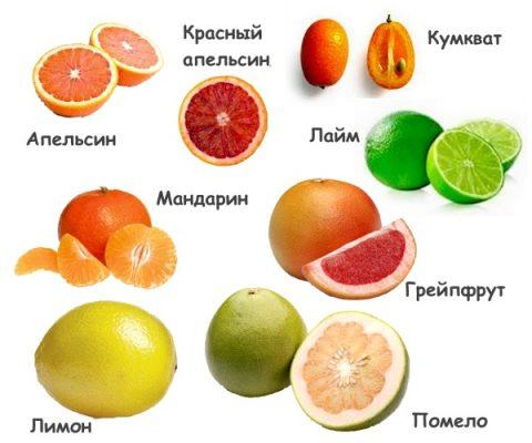 Виды цитрусовых