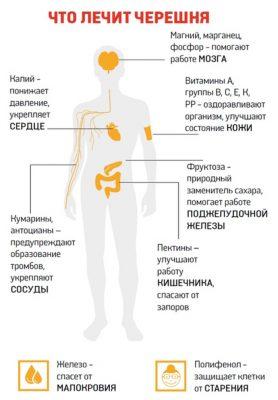 Лечебное действие черешни