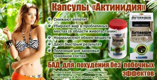 Актинидия — худеем на натуральном препарате